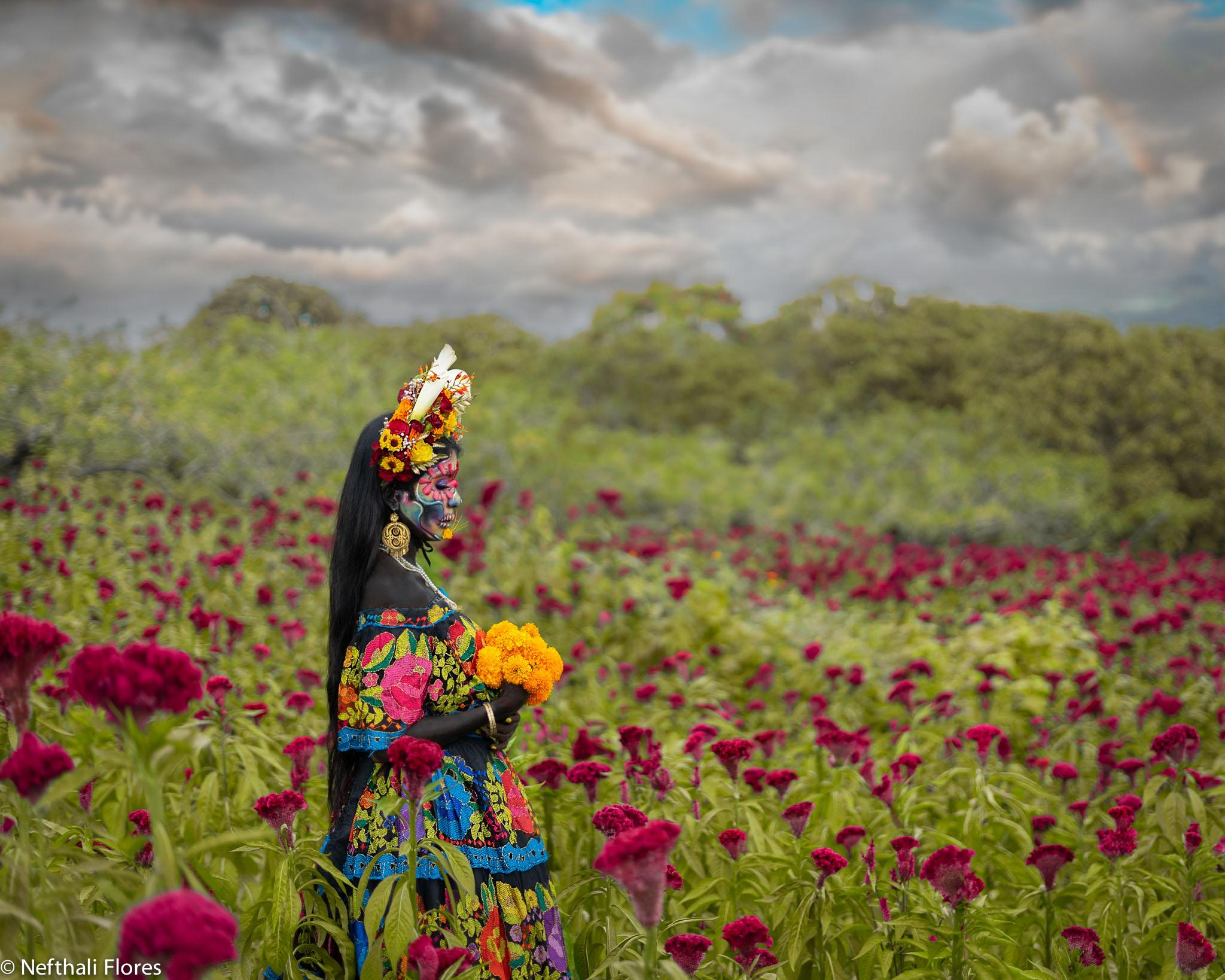 © Nefthali Flores